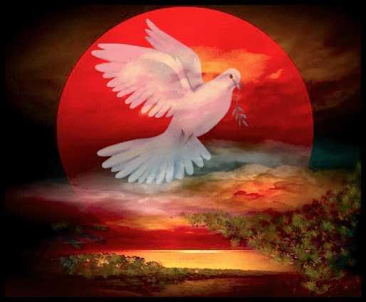 mensajeros-de-paz